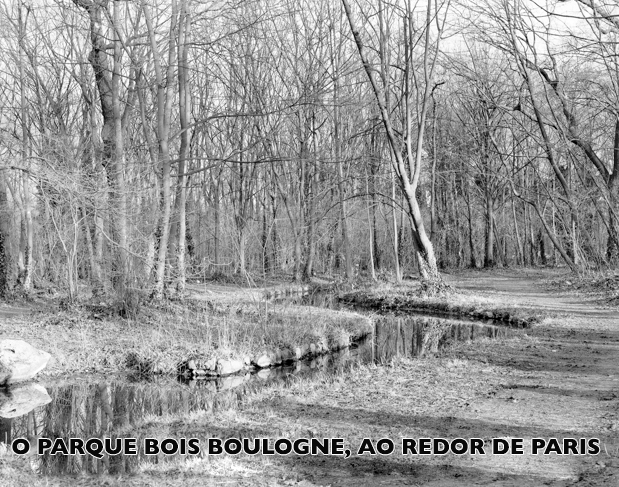 BOIS-BOULOGNE_p